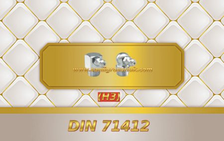 Eğri Gresörlük Dişli H3 90 ° DIN 71412