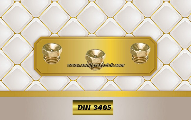 Flush Type greasenipple type L brass (D1) DIN 3405